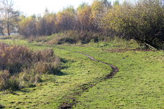 Nature heather path. Landscape overview in Kleine Wielen in autumn royalty free stock photography
