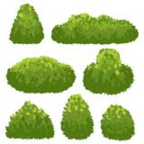 Nature hedge, garden green bushes. Cartoon shrub and bush vector set isolated on white background. Landscape plant environment, spring shrubbery for park royalty free illustration