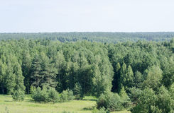 Nature from high. Forest and firlds in summertime Royalty Free Stock Photo