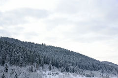 Nature. High mountains under snow in the winter stock photography