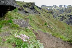 Nature in hiking the laugavegur trail in Iceland stock photo