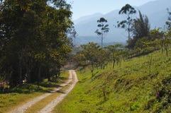 Nature in Honduras