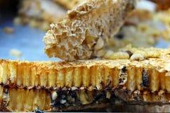 Nature honey comb. Raw nature yellow honey comb Royalty Free Stock Photos