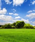 Nature, horizontal Photos libres de droits