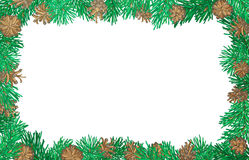Nature horizontal background with pine branches and cones. Christmas frame. Vector illustration. There is copy space for your text on white background Stock Image