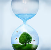 Nature in Hourglass Stock Photos