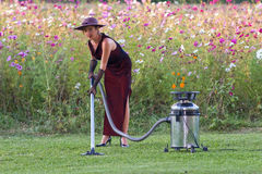 Nature housekeeper Royalty Free Stock Images