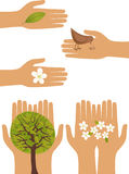 Nature in human hands Stock Photo