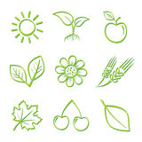 Nature Icon Set. On White Vector Illustration