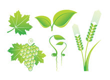 Nature Icons. On White Background Royalty Free Stock Photography