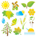 Nature Icons. Vector set of nature icons Royalty Free Stock Photography