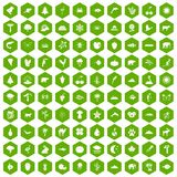 100 nature icons hexagon green. 100 nature icons set in green hexagon isolated vector illustration Stock Photography