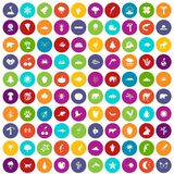 100 nature icons set color. 100 nature icons set in different colors circle isolated vector illustration Royalty Free Stock Photo
