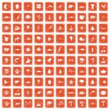 100 nature icons set grunge orange. 100 nature icons set in grunge style orange color isolated on white background vector illustration royalty free illustration