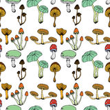 Nature illustration. Natural materials. Forest postcard. Assorted mushrooms. Edible and poisonous mushrooms. Seamless pattern. Royalty Free Stock Images