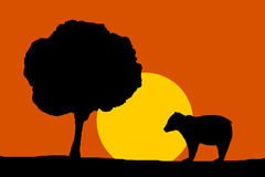 Nature illustration - night moon bear silhouette and tree Stock Photography