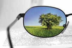 Nature In Glasses Stock Photos