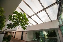 Nature inside the building, corridor and foliage royalty free stock photos