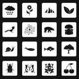 Nature items icons set squares vector. Nature items icons set in white squares on black background simple style vector illustration Stock Image