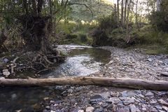 Nature itself. A beautiful picture of a river passing through the wilderness royalty free stock photo