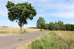 Nature journey sky trees Royalty Free Stock Photo