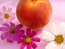 Nature joy. Whit fruits, flowers and colours stock photos