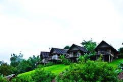 Nature at KhaoSok , Thailand Royalty Free Stock Images