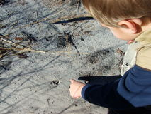 Nature Kids. Kids tracking animal prints. This is my son looking at a raccoon track that we found in the woods Royalty Free Stock Photography