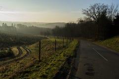 Nature Kolding Denmark. The picture is taken at sunrise near Kolding in Denmark Stock Images