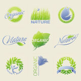 Nature labels, badges with leaves, flowers. Nature labels, badges, symbols with leaves, flowers and butterflies. Vector design elements Stock Photography