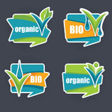 Nature labels. Cool and bright organic stickers and labels collection Stock Photo
