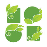 Nature labels. Vector collection of bright green leaf frames and stickers Stock Photo