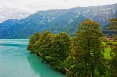 Nature at Lake Brienz and Brienzer Rothorn mountain Bern Switzerland Royalty Free Stock Image