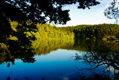 Nature lake scenic background Royalty Free Stock Images