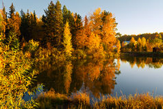 Lake in sunset rays. Autumn landscape Royalty Free Stock Photography