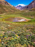 Nature landscape with Aconcagua, Argentina. Beautiful nature landscape with Aconcagua in the background, Aconcagua National Park, Argentina stock images