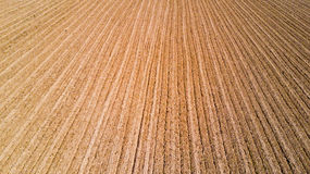Nature and landscape: aerial view of a field, cultivation, countryside, farming, Royalty Free Stock Photo