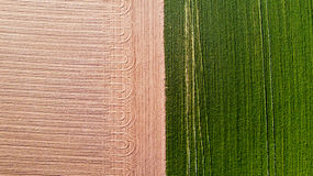 Nature and landscape: Aerial view of a field, cultivation, green grass, countryside, farming,. Dirt road Royalty Free Stock Photography
