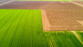 Nature and landscape: Aerial view of a field, cultivation, green grass, countryside, farming, Royalty Free Stock Photography