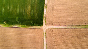 Nature and landscape: Aerial view of a field, cultivation, green grass, countryside, farming, Royalty Free Stock Photos
