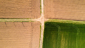 Nature and landscape: Aerial view of a field, cultivation, green grass, countryside, farming, Stock Images