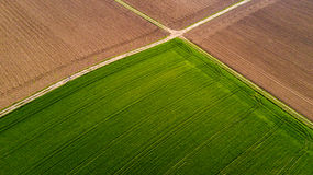 Nature and landscape: Aerial view of a field, cultivation, green grass, countryside, farming,. Dirt road Royalty Free Stock Photo