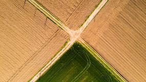 Nature and landscape: Aerial view of a field, cultivation, green grass, countryside, farming,. Dirt road Stock Photography