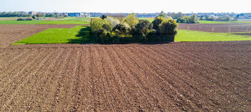 Nature and landscape: Aerial view of a field and trees,. Cultivation, green grass, countryside, farming, dirt road royalty free stock photography