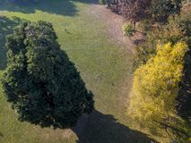 Nature and landscape: aerial view of a park, autumn foliage, leafy trees and meadow, green area Royalty Free Stock Image