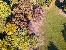 Nature and landscape: aerial view of a park, autumn foliage, leafy trees and meadow, green area Royalty Free Stock Images