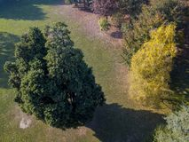 Nature and landscape: aerial view of a park, autumn foliage, leafy trees and meadow, green area Royalty Free Stock Photo