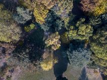 Nature and landscape: aerial view of a park, autumn foliage, leafy trees and meadow, green area Stock Photo