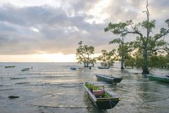Nature landscape of boats on the beach at sunset royalty free stock images