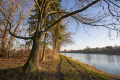 Nature landscape with Elbe Stock Photography
